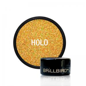 Micro Glitter 14