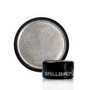 Pigment Chrome Silver 0.7g