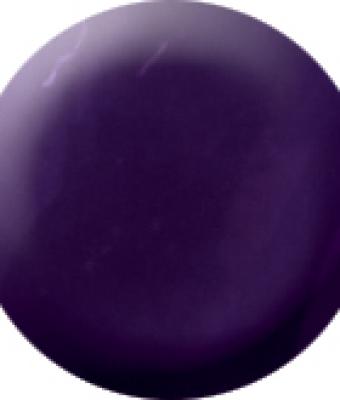 Praf acrylic color 5