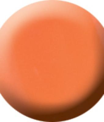 Praf acrylic color 17
