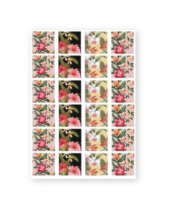 Baroque Stickers Tropical