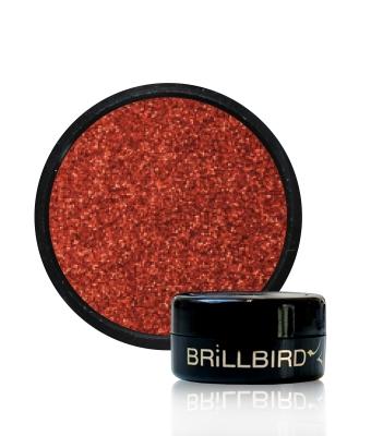 Micro Glitter 11