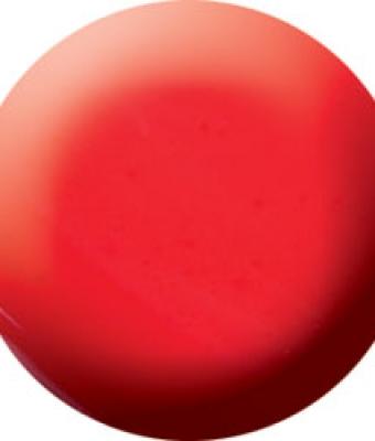 Praf acrylic color 42
