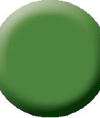 Praf acrylic color 52