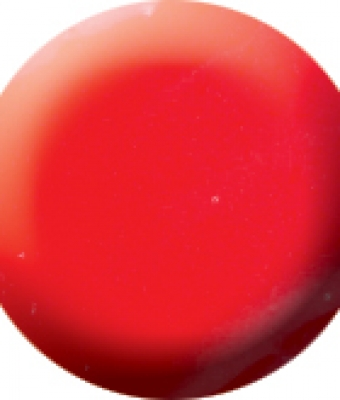 Praf acrylic color 3  7gr