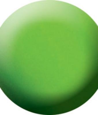 Praf acrylic color 45